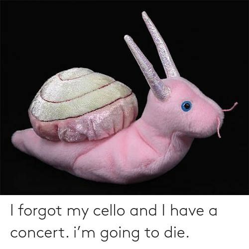 cello: I forgot my cello and I have a concert. i'm going to die.
