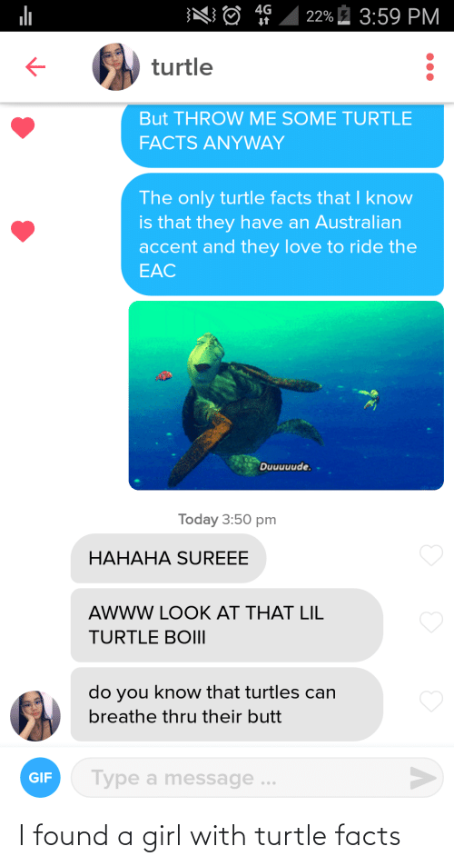 Turtle: I found a girl with turtle facts