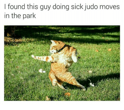 dank: I found this guy doing sick judo moves  in the park
