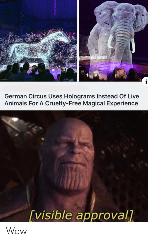 Circus: i  German Circus Uses Holograms Instead Of Live  Animals For A Cruelty-Free Magical Experience  [visible approval] Wow