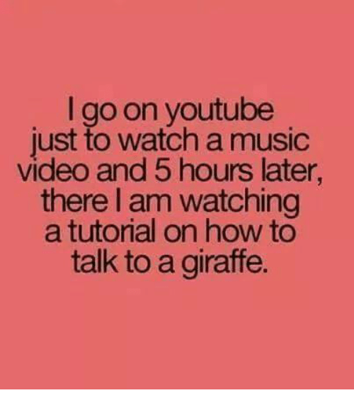 Memes, Music, and youtube.com: I go on youtube  just to watch a music  video and 5 hours later,  there I am watching  a tutorial on how to  talk to a giraffe.