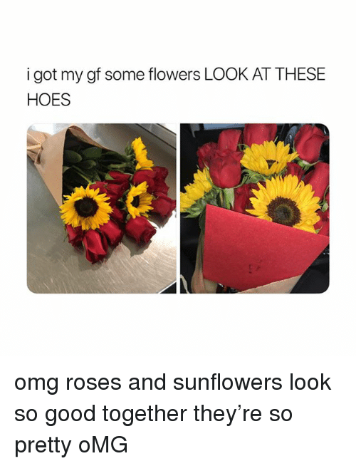Hoes, Omg, and Flowers: i got my gf some flowers LOOK AT THESE  HOES omg roses and sunflowers look so good together they're so pretty oMG