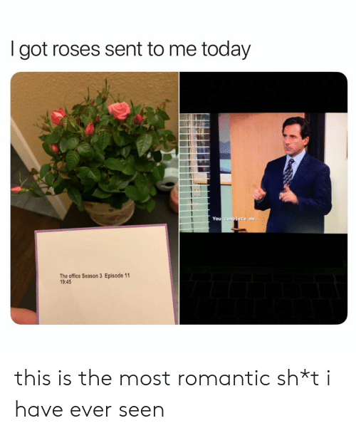 Season 3: I got roses sent to me today  You complete me,  The office Season 3 Episode 11  19:45 this is the most romantic sh*t i have ever seen