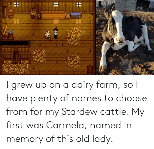 names: I grew up on a dairy farm, so I have plenty of names to choose from for my Stardew cattle. My first was Carmela, named in memory of this old lady.