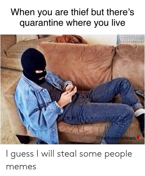 People Memes: I guess I will steal some people memes
