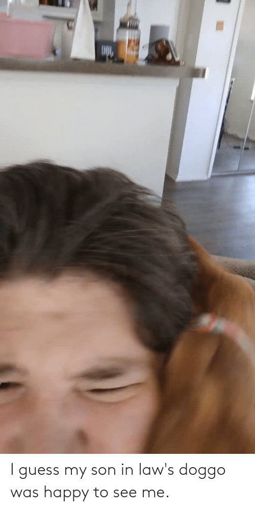 in laws: I guess my son in law's doggo was happy to see me.