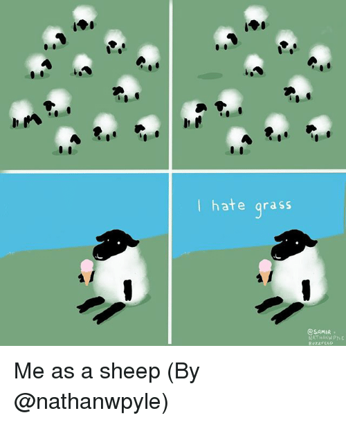 sheeps: I hate grass  eSAMIR  BuzzFCLO Me as a sheep (By @nathanwpyle)
