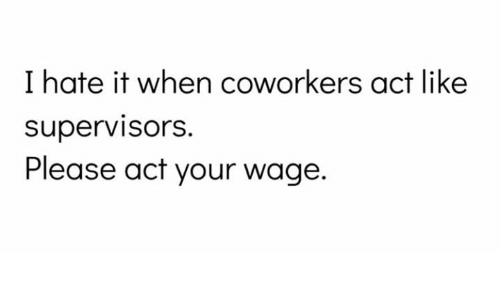 i hate it when: I hate it when coworkers act like  supervisorS.  Please act your wage.