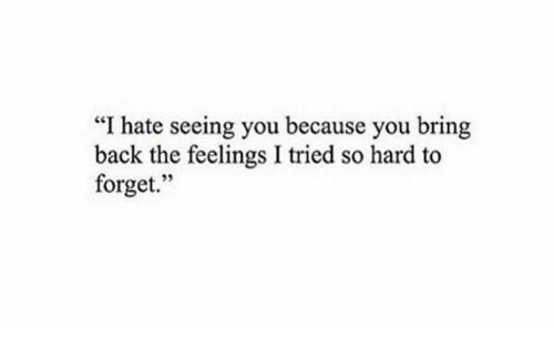 """I Tried So Hard: """"I hate seeing you because you bring  back the feelings I tried so hard to  forget.  95"""
