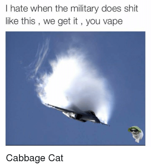 Cats, Doe, and Shit: I hate when the military does shit  like this, we get it you vape Cabbage Cat