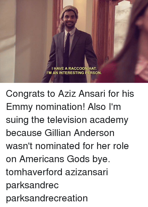 Memes, Gillian Anderson, and Academy: I HAVE A RACCOON HAT  I'M AN INTERESTING PERSON Congrats to Aziz Ansari for his Emmy nomination! Also I'm suing the television academy because Gillian Anderson wasn't nominated for her role on Americans Gods bye. tomhaverford azizansari parksandrec parksandrecreation