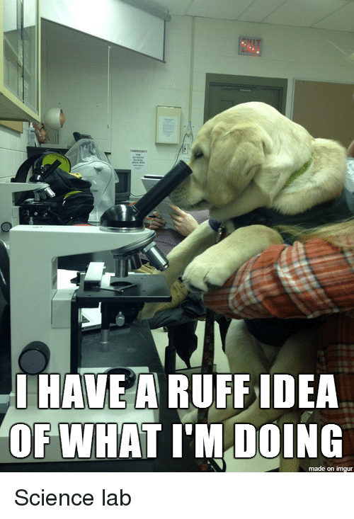 science lab: I HAVE A RUFF IDEA  OF WHAT IM DOING  made on imgur Science lab