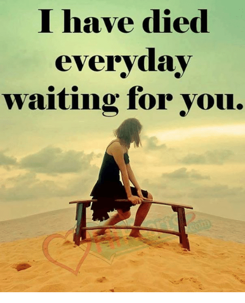 I Have Died Everyday Waiting For You: I have died  everyday  waiting for you.