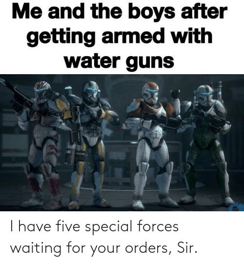 special forces: I have five special forces waiting for your orders, Sir.