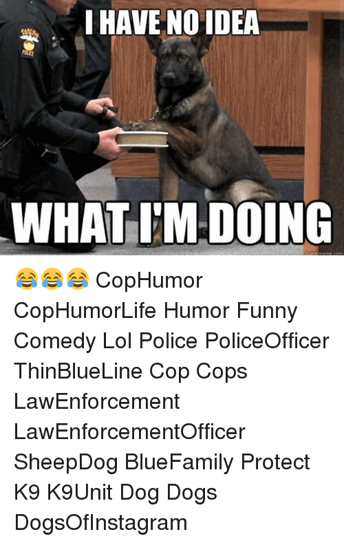 Dogs, Funny, and Lol: I HAVE NO IDEA  WHAT IM DOING  quick meme com 😂😂😂 CopHumor CopHumorLife Humor Funny Comedy Lol Police PoliceOfficer ThinBlueLine Cop Cops LawEnforcement LawEnforcementOfficer SheepDog BlueFamily Protect K9 K9Unit Dog Dogs DogsOfInstagram