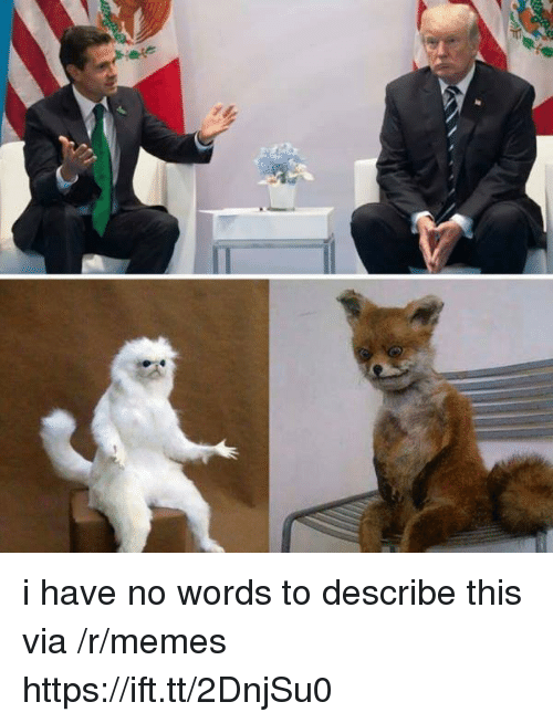 Memes, Via, and Words: i have no words to describe this via /r/memes https://ift.tt/2DnjSu0