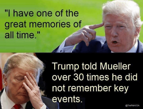 "Over 30: ""I have one of the  great memories of  all time.""  Trump told Mueller  over 30 times he did  not remember key  events.  @TeaPainUSA"