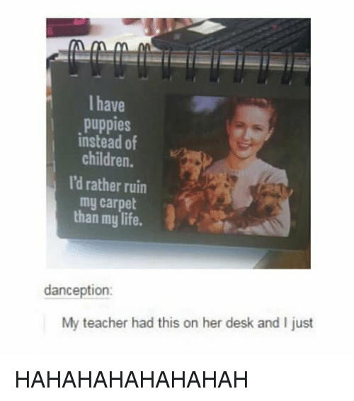 Hahahahahahahah: I have  puppies  instead of  children.  I'd rather ruin  my carpet  than my life.  danception:  My teacher had this on her desk and I just HAHAHAHAHAHAHAH