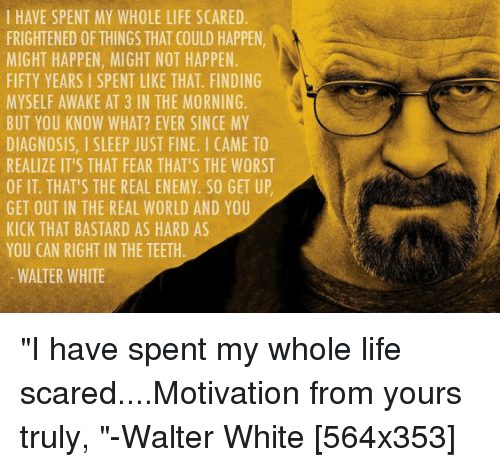 Quotes About Love: 25+ Best Memes About Walter White, Jr