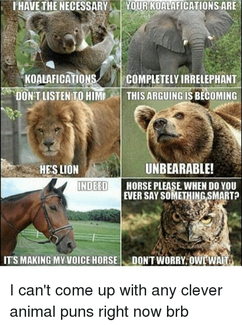 Anime, Arguing, and Horses: I HAVE THE NECESSARY  M YOUR KOALAFICATIONSARE  ONS  COMPLETELY IRRELEPHANT  OONTLISTEN TO HIMI  THIS ARGUING IS BECOMING  UNBEARABLE!  HES LION  INDEED  HORSE PLEASE WHEN DO YOU  EVER SAYSOMETHING SMART  ITS MAKING MY VOICE HORSE  DONTWORRY owrWAI I can't come up with any clever animal puns right now brb