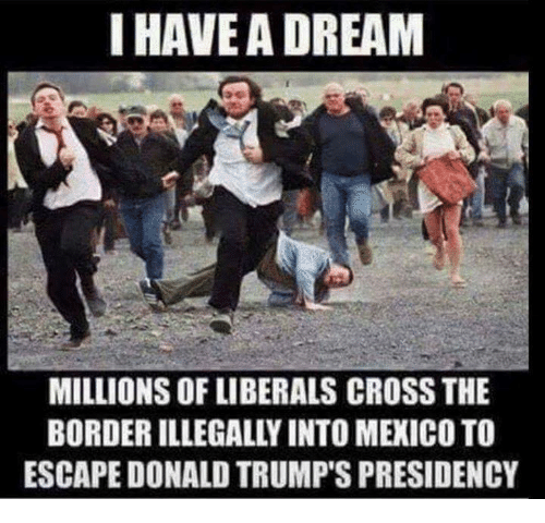 Cross, Mexico, and Dream: I HAVEA DREAM  MILLIONS OF LIBERALS CROSS THE  BORDER ILLEGALLY INTO MEXICO TO  ESCAPE DONALD TRUMP'S PRESIDENCY