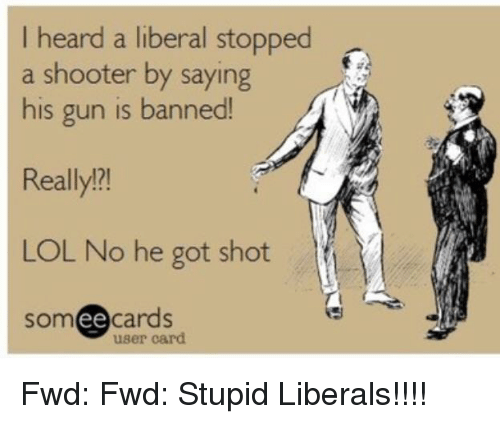 Stupid Liberals: I heard a liberal stopped  a shooter by saying  his gun is banned!  Really?!  LOL No he got shot  someecards  ее  user card