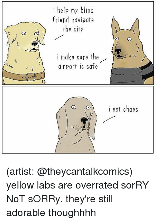 Memes, Shoes, and Sorry: i help my blind  friend navigate  the city  i make sure the  airport is safe  i eat shoes (artist: @theycantalkcomics) yellow labs are overrated sorRY NoT sORRy. they're still adorable thoughhhh