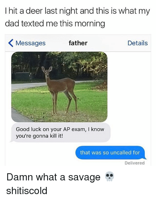 Dad, Deer, and Memes: I hit a deer last night and this is what my  dad texted me this morning  Details  Messages  father  Good luck on your AP exam, l know  you're gonna kill it!  that was so uncalled for  Delivered Damn what a savage 💀 shitiscold