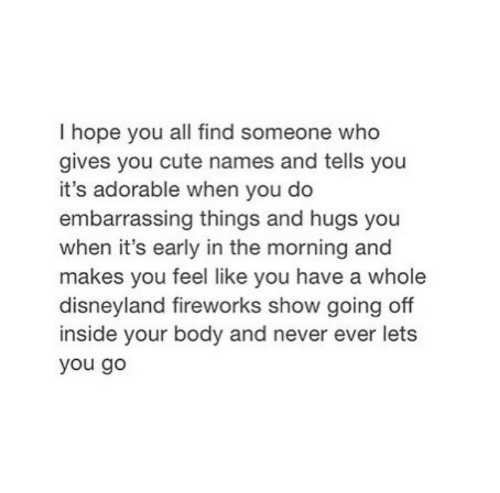 Never Ever: I hope you all find someone who  gives you cute names and tells you  it's adorable when you do  embarrassing things and hugs you  when it's early in the morning and  makes you feel like you have a whole  disneyland fireworks show going off  inside your body and never ever lets  you go