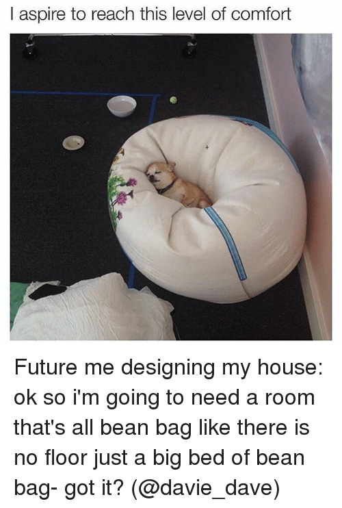 Bean Bagged: I  I aspire to reach this level of comfort Future me designing my house: ok so i'm going to need a room that's all bean bag like there is no floor just a big bed of bean bag- got it? (@davie_dave)