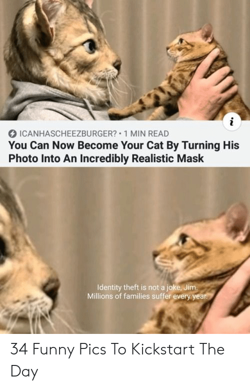identity theft: i  ICANHASCHEEZBURGER? 1 MIN READ  You Can Now Become Your Cat By Turning His  Photo Into An Incredibly Realistic Mask  Identity theft is not a joke, Jim.  Millions of families suffer every year. 34 Funny Pics To Kickstart The Day