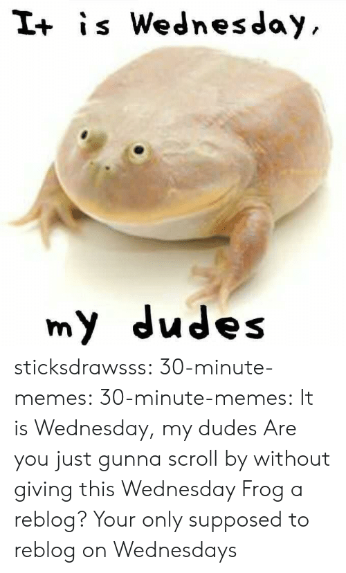 Wednesdays: I+ is Wednesday  my dudes sticksdrawsss: 30-minute-memes:   30-minute-memes: It is Wednesday, my dudes  Are you just gunna scroll by without giving this Wednesday Frog a reblog?   Your only supposed to reblog on Wednesdays