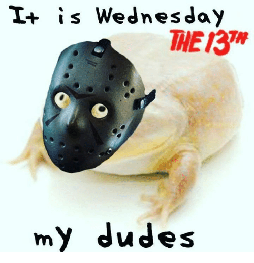 Wednesday, My-Dudes, and The: I+ is Wednesday  THE 13  my dudes