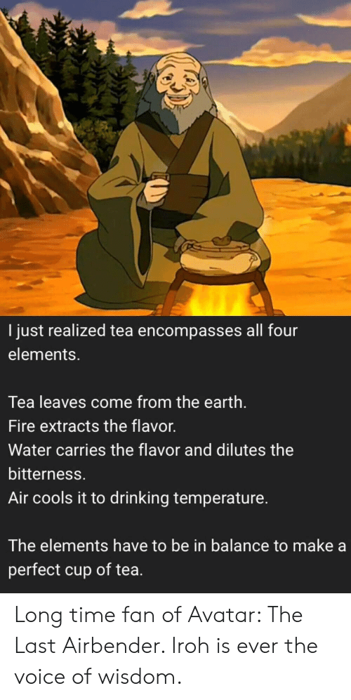the voice: I just realized tea encompasses all four  elements.  Tea leaves come from the earth.  Fire extracts the flavor.  Water carries the flavor and dilutes the  bitterness.  Air cools it to drinking temperature.  The elements have to be in balance to make a  perfect cup of tea. Long time fan of Avatar: The Last Airbender. Iroh is ever the voice of wisdom.