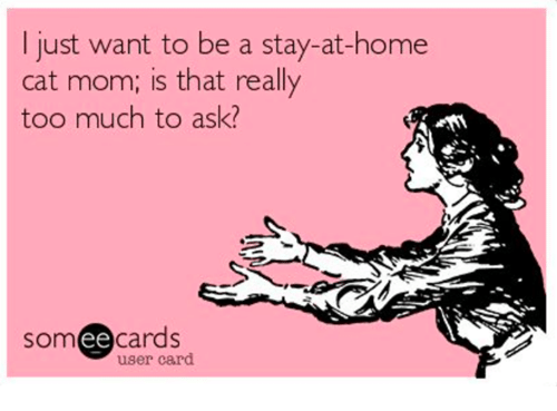 Ee Cards: I just want to be a stay-at-home  cat mom; is that really  too much to ask?  ee  cards  user card
