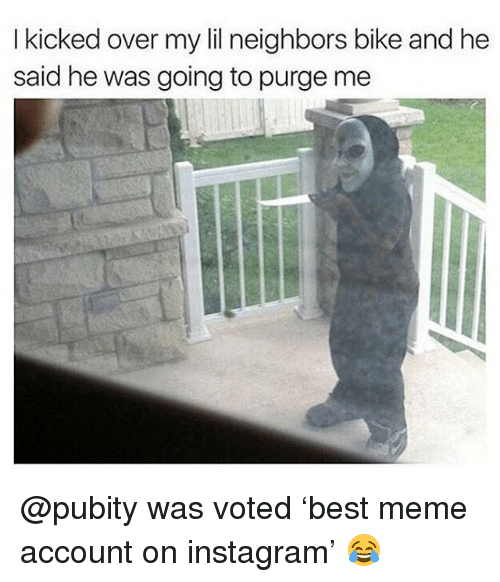 Instagram, Meme, and Memes: I kicked over my lil neighbors bike and he  said he was going to purge me @pubity was voted 'best meme account on instagram' 😂