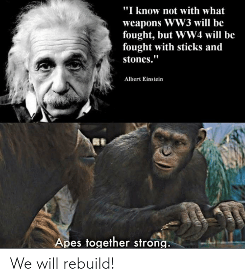 """We Will Rebuild: """"I know not with what  weapons WW3 will be  fought, but WW4 will be  fought with sticks and  stones.""""  Albert Einstein  Apes together strong. We will rebuild!"""