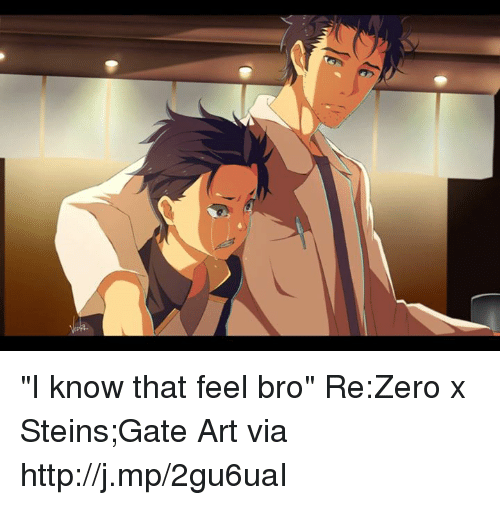 "Feels Bro: ""I know that feel bro"" Re:Zero x Steins;Gate  Art via http://j.mp/2gu6uaI"