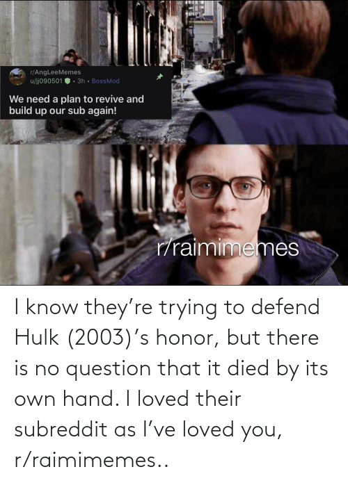 Hulk: I know they're trying to defend Hulk (2003)'s honor, but there is no question that it died by its own hand. I loved their subreddit as I've loved you, r/raimimemes..