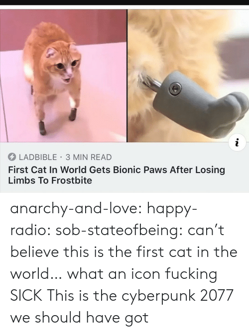 Anarchy: i  LADBIBLE 3 MIN READ  First Cat In World Gets Bionic Paws After Losing  Limbs To Frostbite anarchy-and-love: happy-radio:  sob-stateofbeing: can't believe this is the first cat in the world… what an icon  fucking  SICK   This is the cyberpunk 2077 we should have got