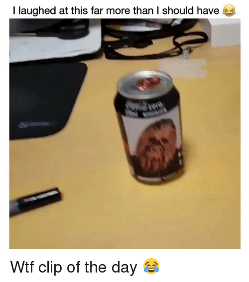 Funny, Wtf, and Day: I laughed at this far more than I should have Wtf clip of the day 😂