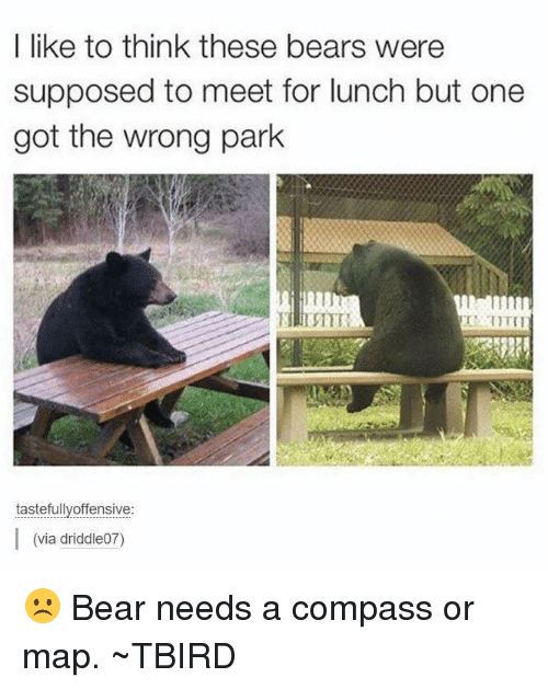 Compassion: I like to think these bears were  supposed to meet for lunch but one  got the wrong park  tastefully offensive  I (via driddle07) ☹️ Bear needs a compass or map.  ~TBIRD