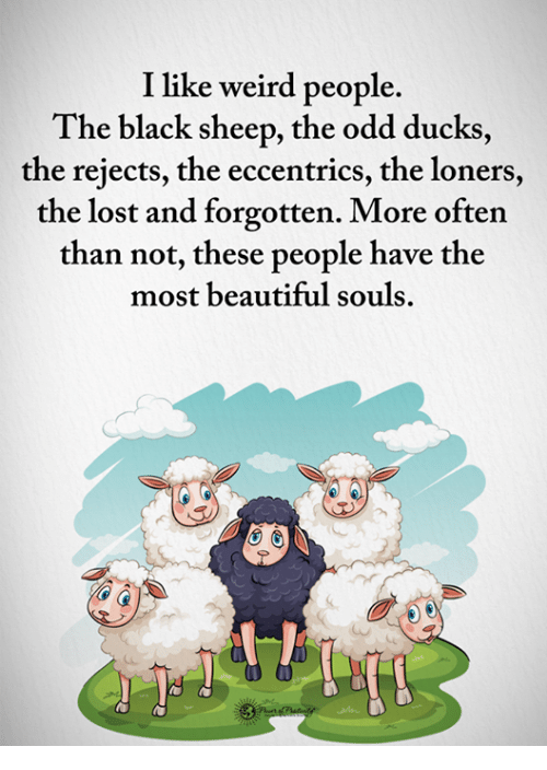 black sheep: I like weird people.  The black sheep, the odd ducks  the rejects, the eccentrics, the loners,  the lost and forgotten. More often  than not, these people have the  most beautiful souls