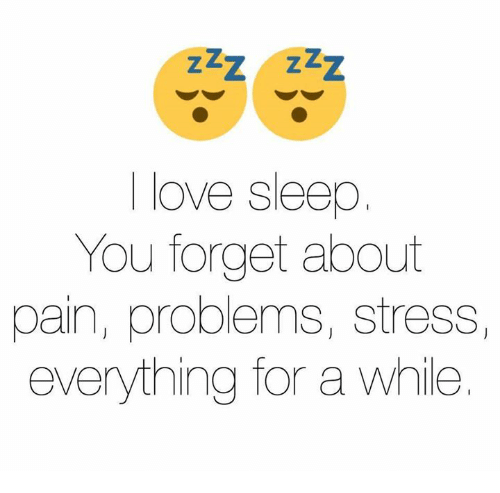Funny: I love Sleep  You forget about  pain, problems, stress,  everything for a while