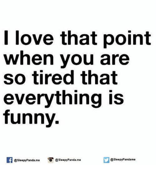 Everything Is Funny Meme : I love that point when you are so tired everything is