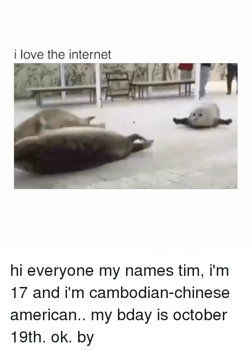 Internet, Love, and American: i love the internet hi everyone my names tim, i'm 17 and i'm cambodian-chinese american.. my bday is october 19th. ok. by