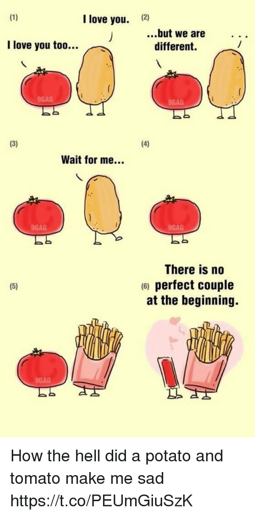 9gag, Love, and Memes: I love you.  12)  ..but we are  different.  I love you too..  9GAG  9GAG  Wait for me...  9GAG  9GAG  There is no  6) perfect couple  at the beginning.  9GAG How the hell did a potato and tomato make me sad https://t.co/PEUmGiuSzK