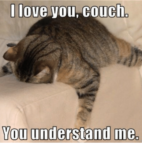 You Understand Me Meme I Love You Couch You U...