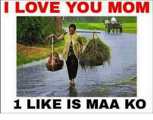 Love, Memes, and Moms: I LOVE YOU MOM  1 LIKE IS MAA KO