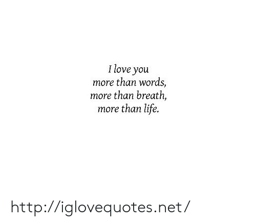 i love you more than: I love you  more than words,  more than breath,  more than life. http://iglovequotes.net/